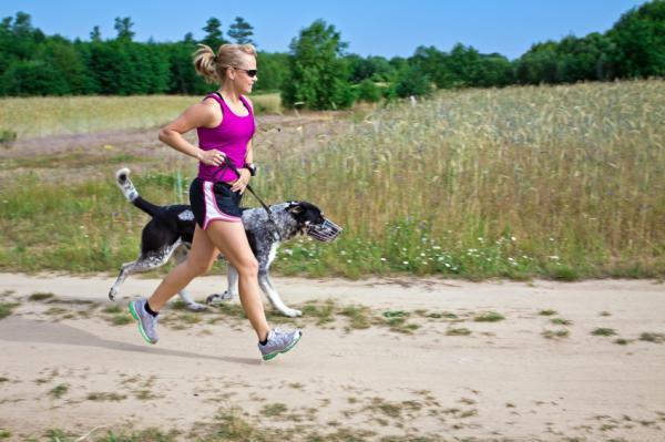 Sfaturi Pentru Distrugerea Câinilor - 7. Dă Câinelui Tău Mai Multă Mișcare