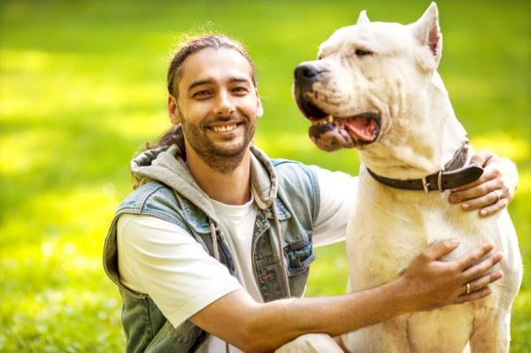 15 Greșeli La Antrenarea Unui Câine - 14. Nerespectarea Instruirii