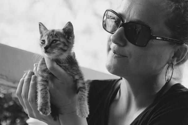 Sfaturi Pentru A Face O Pisică Mai Socială - Socializare Timpurie