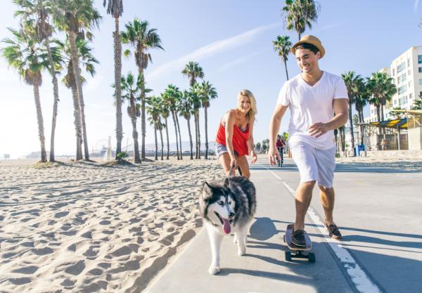 Exerciții Pentru Câinii Hiperactivi - 2. Alergare