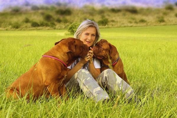 Învață Câinele Să Vină - Învață-Ți Câinele Să Vină