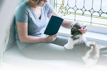 Oprește comportamentul agresiv al câinelui tău